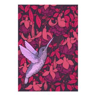 Foto Colibri e violeta fúcsia