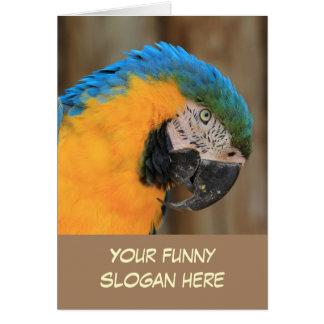 Foto considerável do papagaio para personalizar-se cartão
