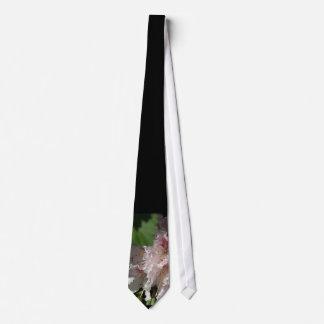 Foto cor-de-rosa do rododendro gravata