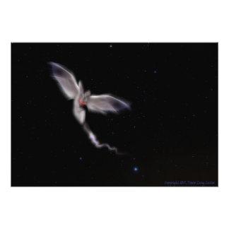 Foto Coração do anjo