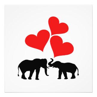 Foto Corações & elefantes