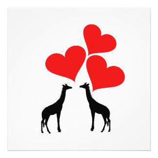 Foto Corações & girafas