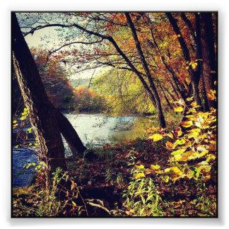 Foto Córrego do outono