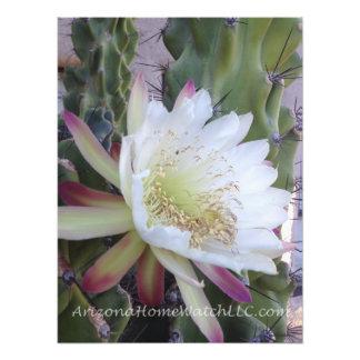 Foto da arte do impressão da flor branca do cacto