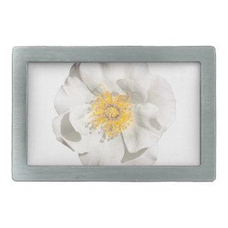Foto da flor branca
