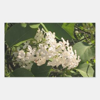 Foto da flor com etiqueta branca bonita do lilac adesivo retangular