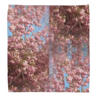 Foto da flor de cerejeira no Bandana