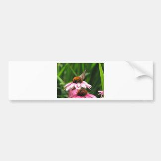 Foto da flor e da borboleta adesivo para carro