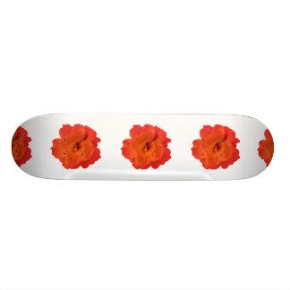 Foto da rosa vermelha shape de skate 18,7cm