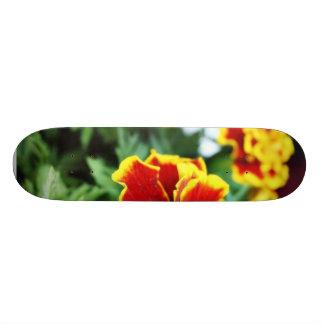 Foto detalhada dos diversos flor americana do crav shape de skate 18,4cm