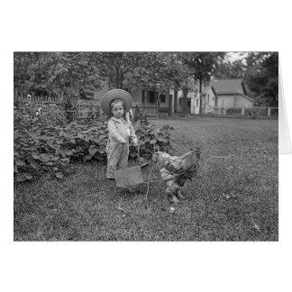 Foto do jardim da menina do galo dos 1880's do cartão