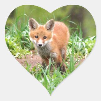 Foto do jogo curioso da raposa adesivo coração