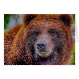 Foto dos animais selvagens do urso de Brown do urs Cartao
