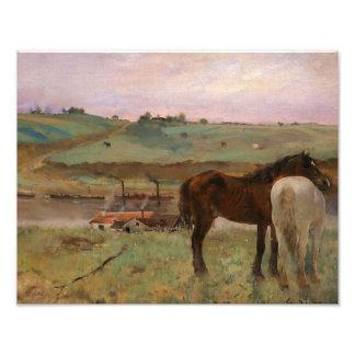 Foto Edgar Degas - cavalos em um prado