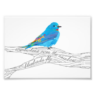 Foto Em algum lugar sobre o impressão do Bluebird do