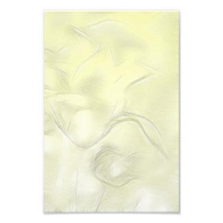 Foto Esboço da flor de duas tulipas no amarelo