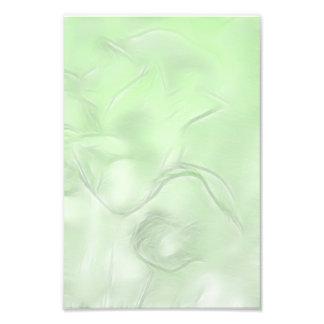 Foto Esboço da flor de duas tulipas no verde