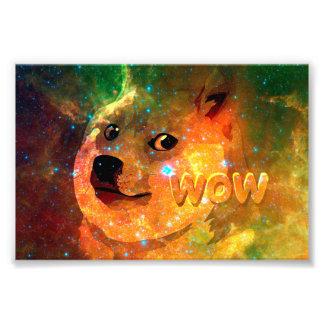 Foto espaço - doge - shibe - uau doge