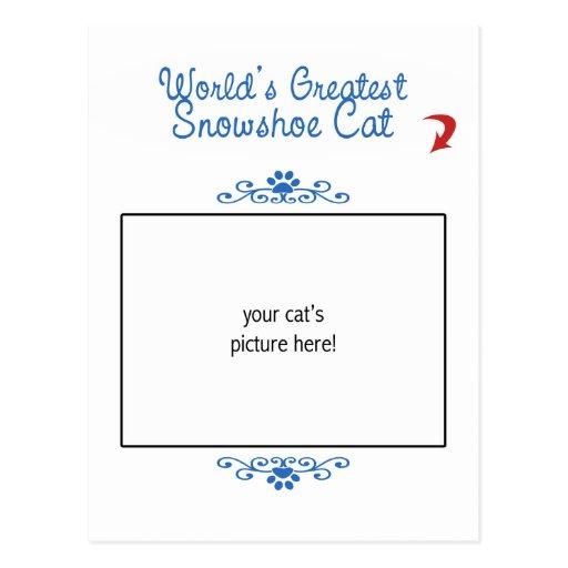 Foto feita sob encomenda! Gato do sapato de neve d Cartao Postal