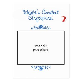 Foto feita sob encomenda! Mundos o grande Singapur Cartões Postais