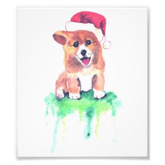 Foto Filhote de cachorro do Corgi do feriado -