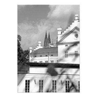 Foto Flor. Casa da pedra e do castelo de Praga brancos