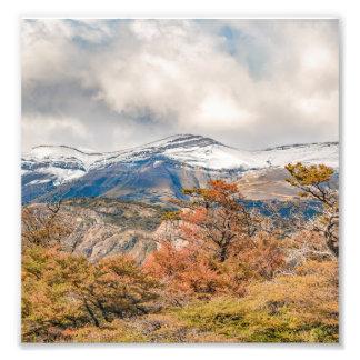 Foto Floresta e montanhas nevado, Patagonia, Argentina