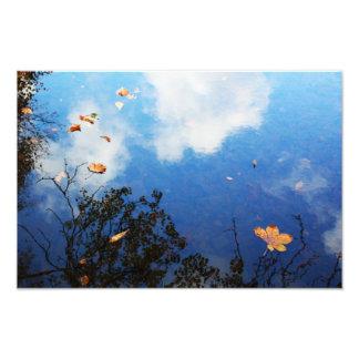 Foto Folha na água