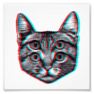 Foto Gato 3d, 3d gato, gato preto e branco