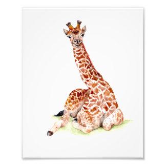 Foto Girafa do bebê