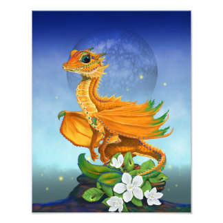 Foto Impressão alaranjado do dragão 11x14
