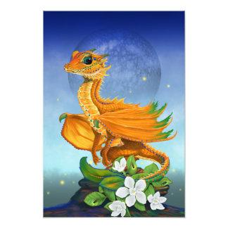 Foto Impressão alaranjado do dragão 13x19