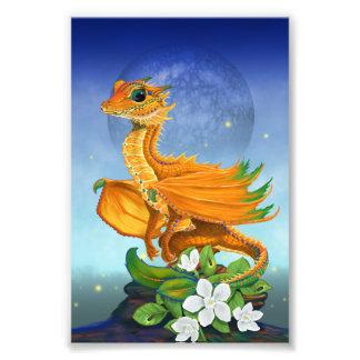 Foto Impressão alaranjado do dragão 4x6