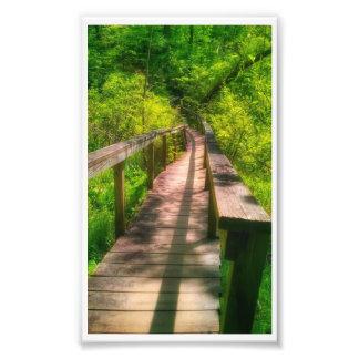 Foto Impressão da ponte