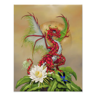 Foto Impressão do dragão 11x14 da fruta do dragão