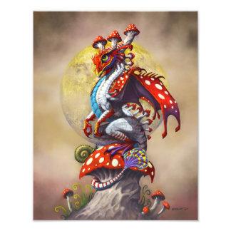 Foto Impressão do dragão 11x14 do cogumelo