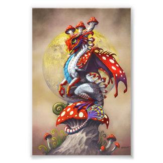 Foto Impressão do dragão 4x6 do cogumelo