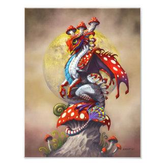 Foto Impressão do dragão 8.5x11 do cogumelo