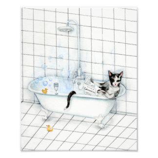 Foto Jornal da leitura do gato na banheira