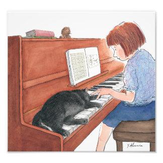 Foto Kramer o gato que dorme no piano