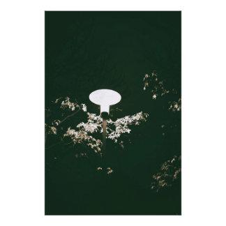 Foto Lanterna na noite