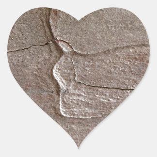 Foto macro do latido do pinho adesivo coração