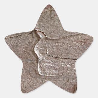 Foto macro do latido do pinho adesivo estrela