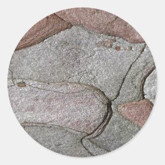 Foto macro do latido do pinho adesivo redondo