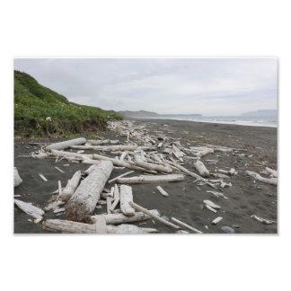 Foto Madeira lançada costa no Kodiak