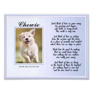 Foto Memorial masculino do animal de estimação do cão