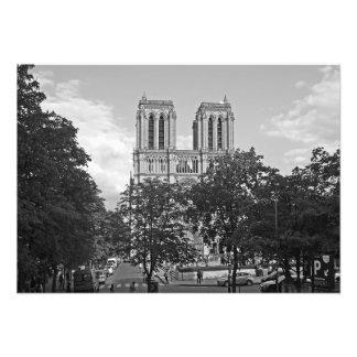 Foto Notre Dame de Paris no ambiente das árvores