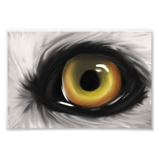Foto Olho do lobo