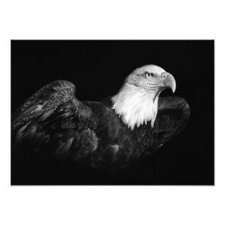 FOTO ORGULHO AMERICANO