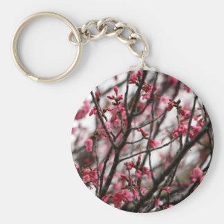 Foto original do macro das flores de cerejeira chaveiro